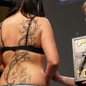 bara_tribo_tattoo_czechy_-_i_miejsce_ornamentic_20091211_1866497980