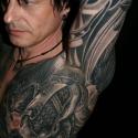 noi_siamese3_1969_tattoo_ii_miejsce_large_20091213_1640477830
