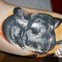 tattoo_konwent_gdansk_2012_-_tatuaze_63_20120814_1915955527